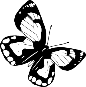 Трансформация. Проявление самости