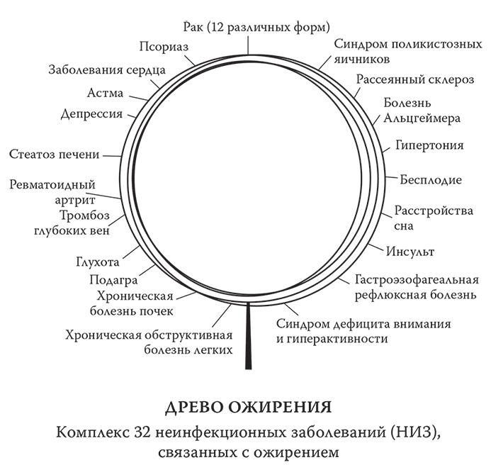 Человеческий суперорганизм
