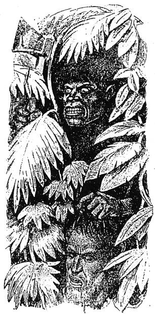 В Офире царя Соломона