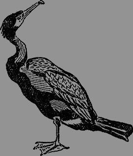 Всемирный следопыт, 1930 № 06