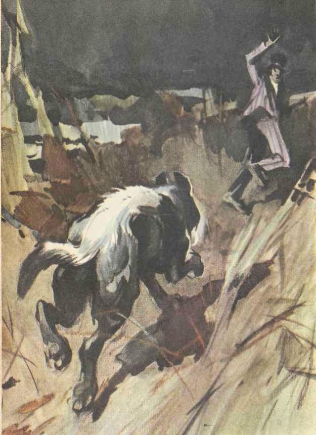 Артур Конан Дойль. Собрание сочинений в 8 томах. Том 3