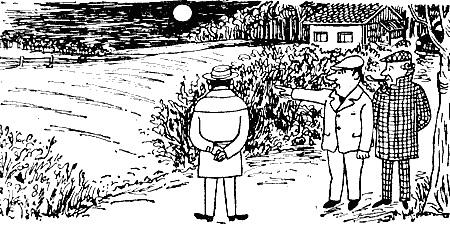 Инспектор Варнике