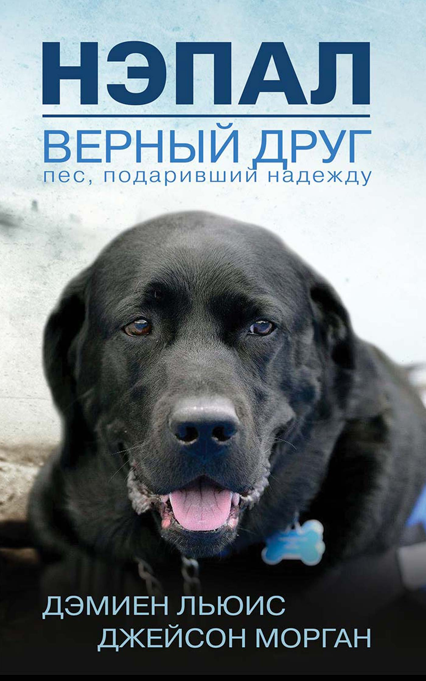 Нэпал — верный друг. Пес, подаривший надежду