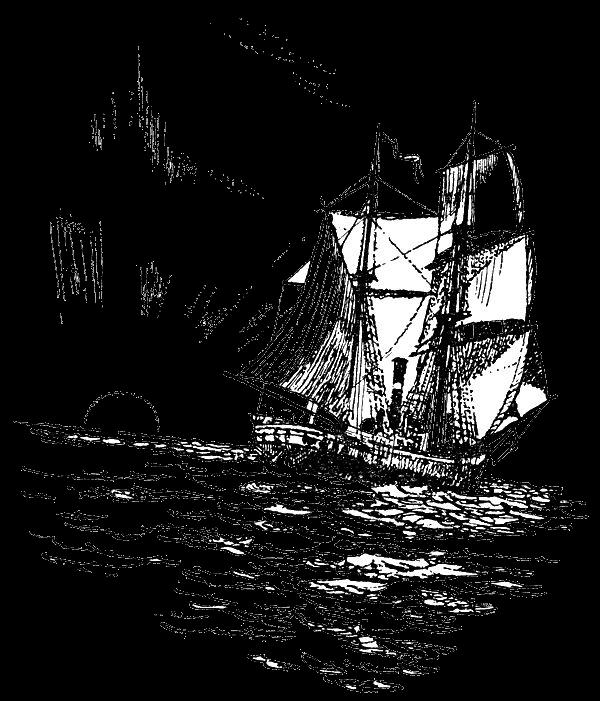 Фитильный полив — классика жанра, фиалки (сенполии) 49