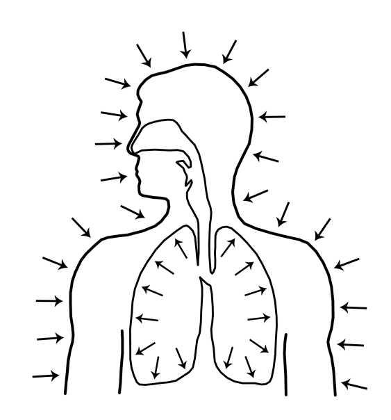 Парадоксальное дыхание для начинающих