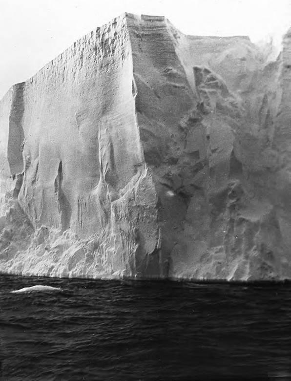В сердце Антарктики