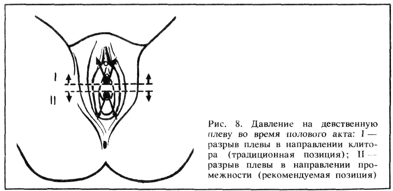Техника входа члена во влагалище 10 фотография