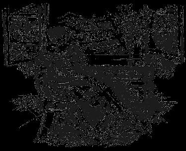 Овод (с иллюстрациями)