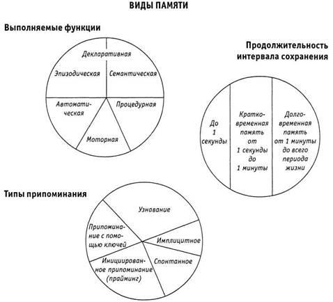 Психология критического мышления