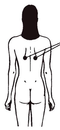 Три типа мужских половых органов Секреты любви Даосская