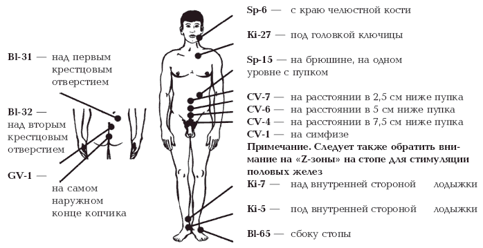 Методика продления оргазма у мужчин