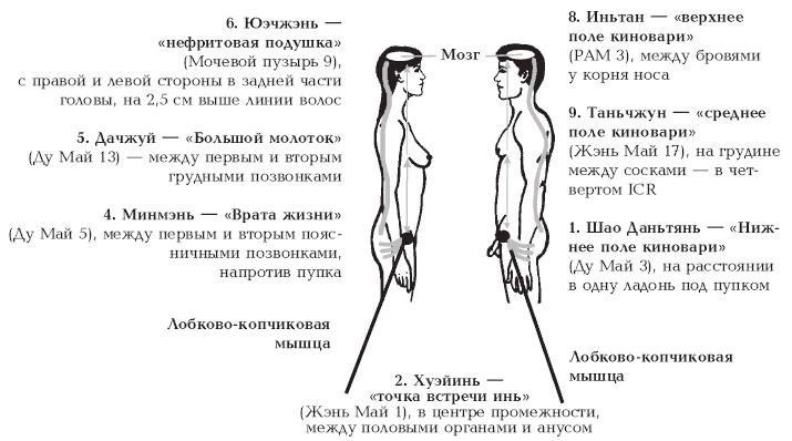 как удовлетворить жену в сексе Петропавловск-Камчатский