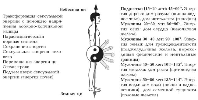 Виды оргазма у мужчина