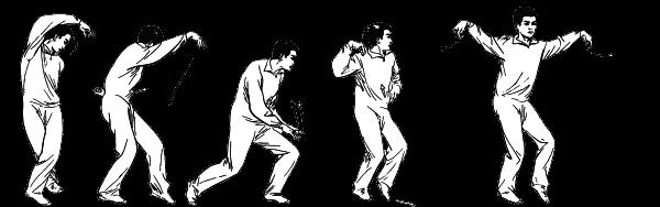 Танцующий феникс: тайны внутренних школ ушу