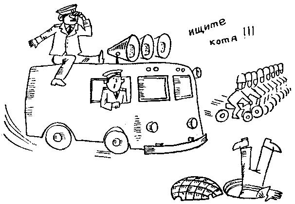 котик детектив