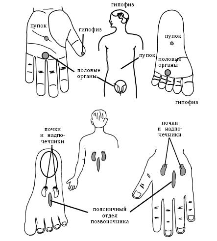 Иглоукалывание точки на теле схема и что лечит