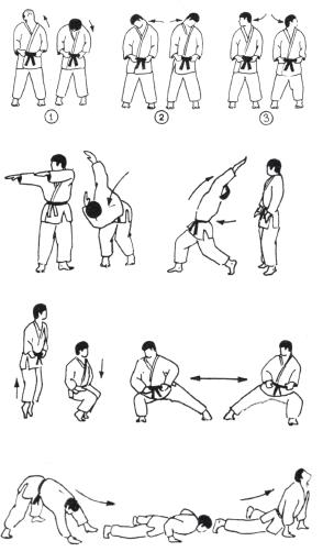 Курсовые работы по борьбе дзюдо 5799