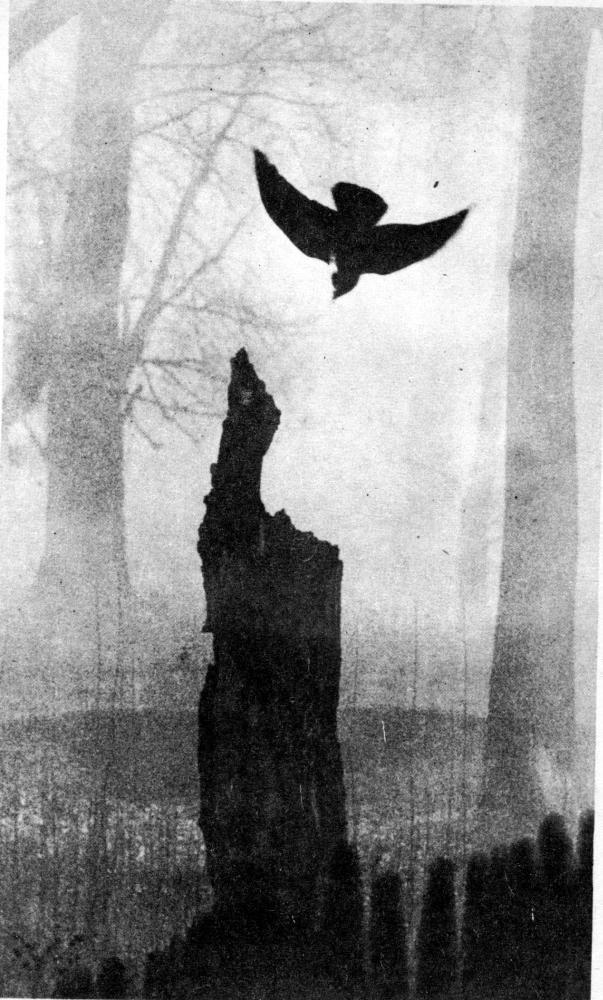 Каменный Пояс, 1982