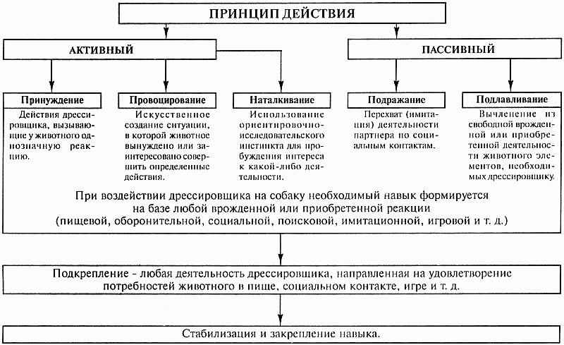 органов и войск МВД РФ