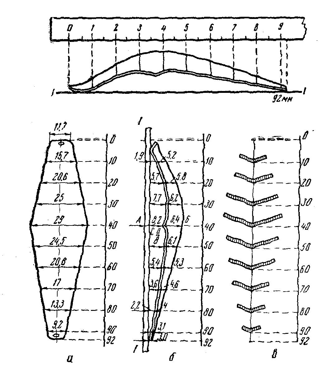 схема поплавочной рыболовной снасти