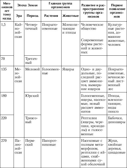 Каримовнинг эры и периоды характеристика самом
