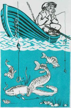 Книга: Где, когда и как ловить рыбу