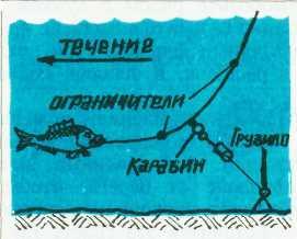 Где, когда и как ловить рыбу