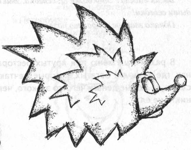картинки нарисованные ежик