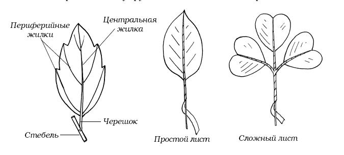 book історія українського селянства нариси в 2 х томах том