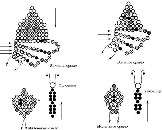 Схемы двух брошей «Бабочка»