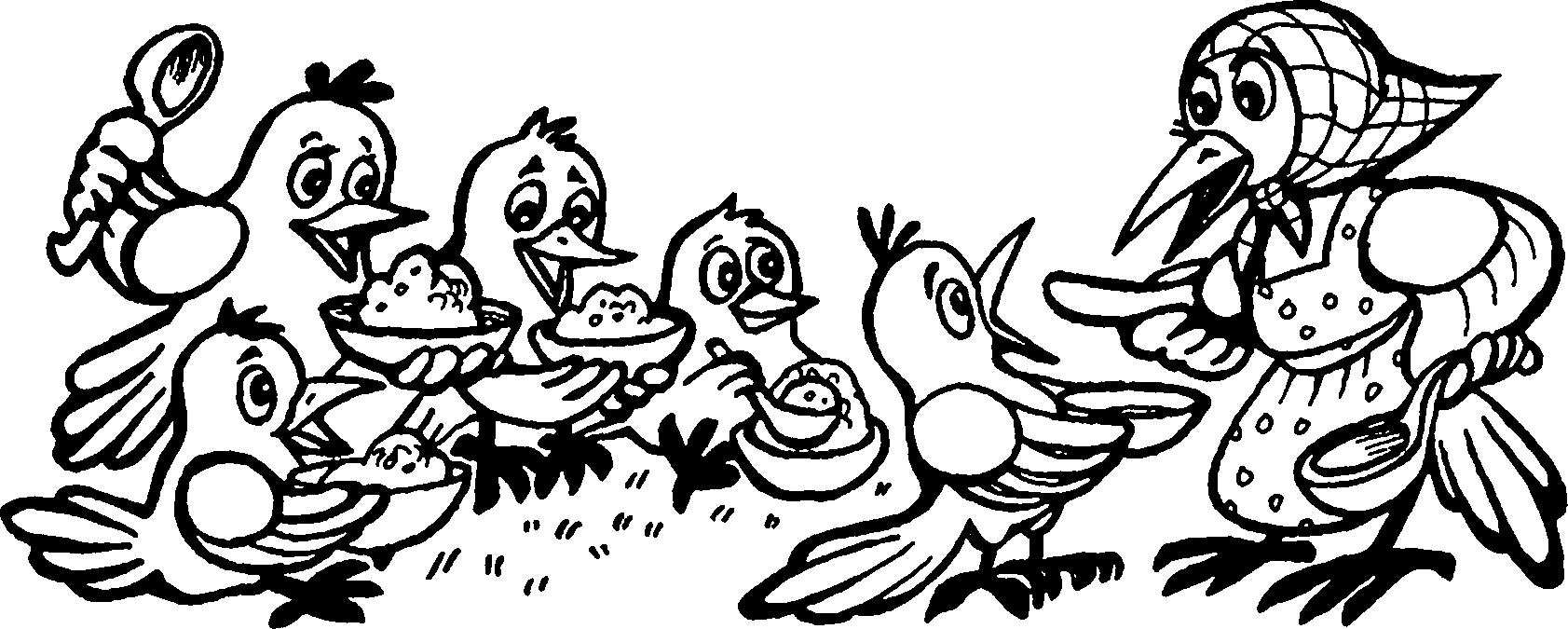картинки сорока белобока для детей