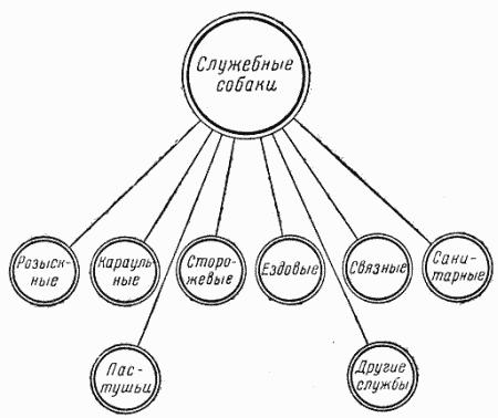 Схема применения служебных