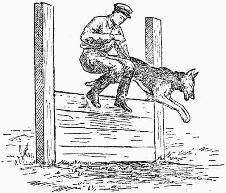 Нарисовать служебную собаку