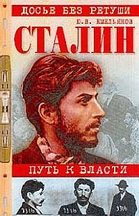 Читать книгу емельянов михаил васильевич биография