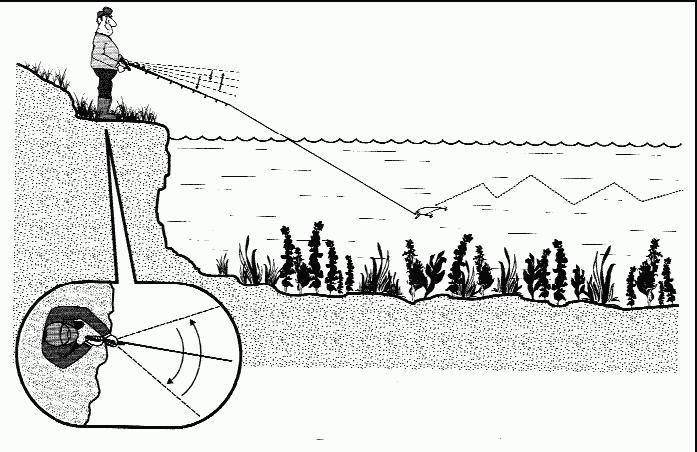 fishhungry инструкция