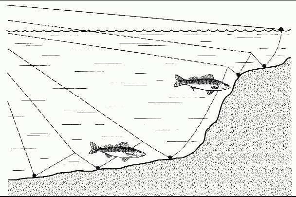 где лучше ловить судака весной