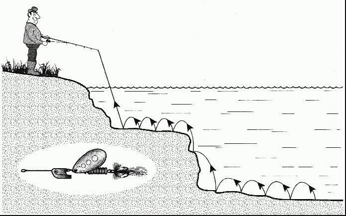 Книга: Как правильно ловить рыбу спиннингом
