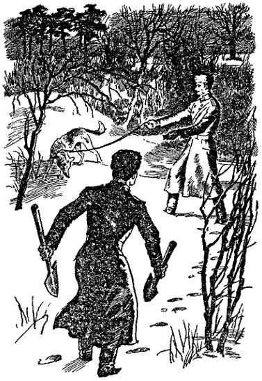 Викинг зимняя обувь размерная сетка