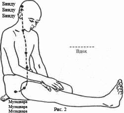 Читать онлайн теория и практика агни йога читать