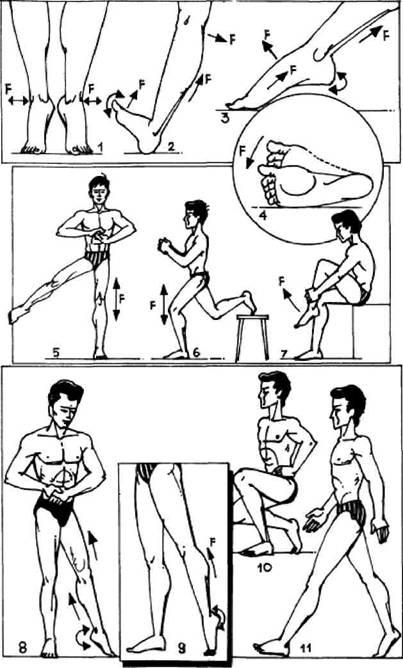 Атлетическая гимнастика без