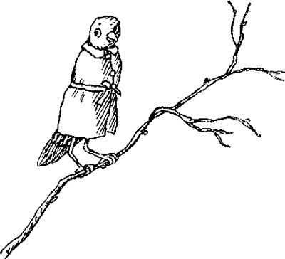 Каракатица картинка