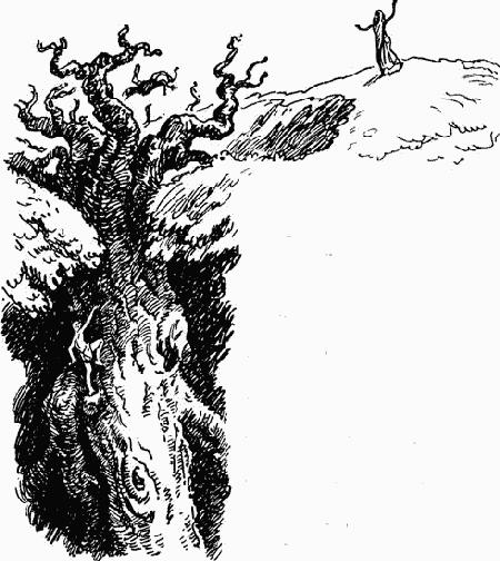 Перевернутое дерево