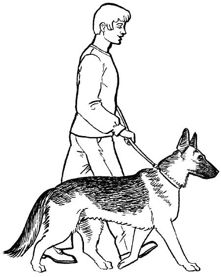Как рисовать хозяина