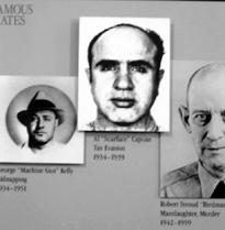 Криминальные кланы