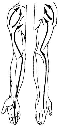 napravlenie-massazha-pri-gipertonicheskoy-bolezni
