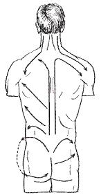 Рефлекторный массаж живота при гипертонии особенности