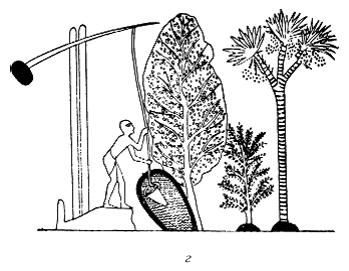 interfacial rheology progress