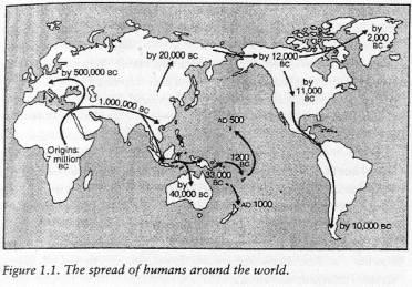 guns germs and steel do Guns, germs, and steel: the fates of human societies (new york: ww  the  americas did originate the potato, sweet potato, lima bean and peanut, but the.