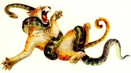 рассказы со змеёй