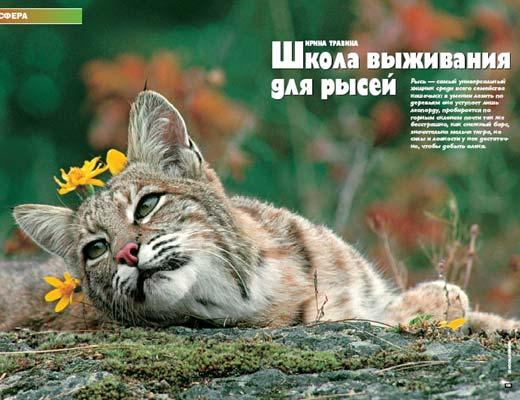 Журнал «Вокруг Света» № 4 за 2005 год